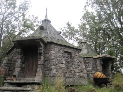 Hagrid's Hut at WWoHP
