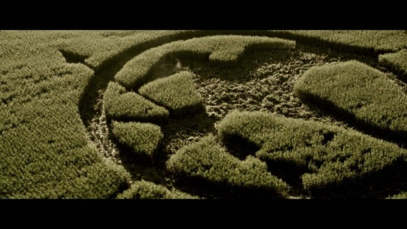 Mockingjay crop circle